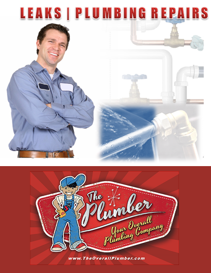 Brazoria County Residential Plumbing Services - Licensed & Insured Brazoria County Plumber - Pipe Leaks Plumbing Repairs Brazoria County