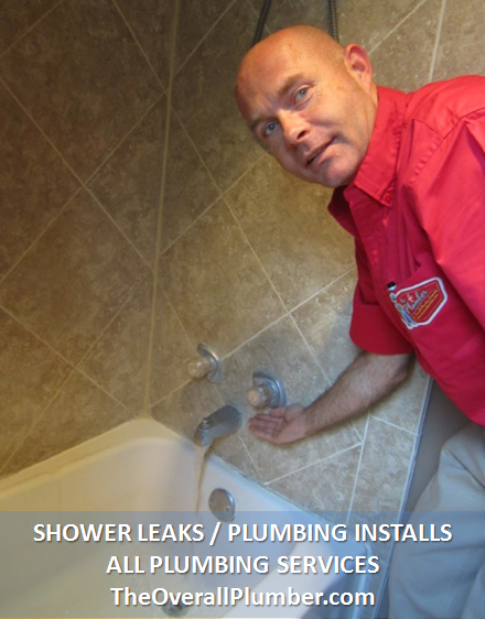 Brazoria County Plumber - Shower Leaks, Clogged Pipes, Plumbing Services - The Plumber